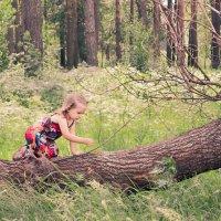 Когда деревья были большими :: Екатерина Актен