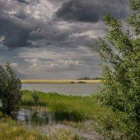 Полгода плохая погода, полгода совсем никуда. :: Алексей Сафонов