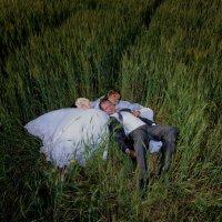 свадебное фото :: vladimir Umrihin