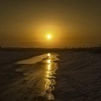 Немного солнца на холодном льду... :: Вадим Губин