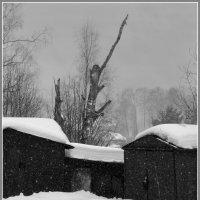 Гаражи у моего дома :: Валерий Талашов