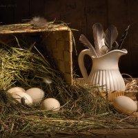 С утиными яйцами :: Светлана Л.