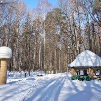 Зимой у родника :: Лидия (naum.lidiya)