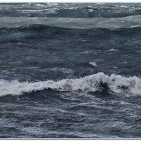 Волны в середине бухте :: Валерий Дворников