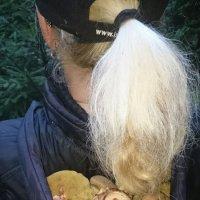 Удобная переноска для грибов :: Олег Каплун