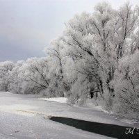 Зима :: Михаил Гажур