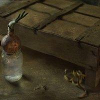 Кому-то везёт, кому-то не очень... :: Ирина Данилова