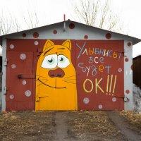 Оптимистичный автолюбитель... :: Sergey Apinis