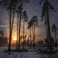 Туман и солнце :: Алексей Бордуков
