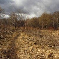 IMG_4609 - Апрель, господа! :: Андрей Лукьянов