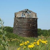 Пизанская башня на севере Тверской области :: Светлана Лысенко