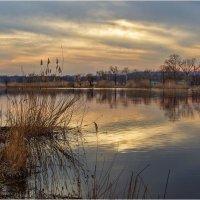 Как хороши весенние закаты :: Лидия Цапко