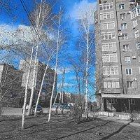 Весна :: Валерий Цуркан