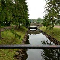 Царскосельский мост :: Поли Борисова