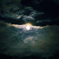 лунный свет :: Артем Тимофеев
