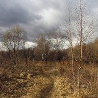IMG_4611 - Апрель, господа! :: Андрей Лукьянов