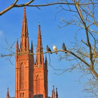 Marktkirche Wiesbaden Germany :: nikolas lang