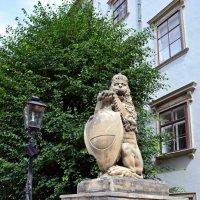 Хофбургский лев :: Ольга