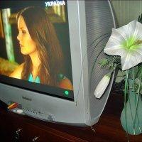 "На экране - телеканал ""Украина"" :: Нина Корешкова"