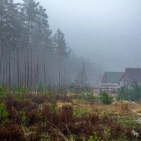 Там за туманами... :: Наталья