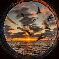 Утро в море :: олег