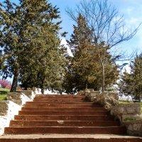 Лестница к чудесам :: Yana Fizazi