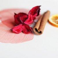 Чайные истории :: Olga Al