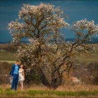 Пришла весна, цветут цветы, у всех сбываются мечты :) :: Алексей Латыш