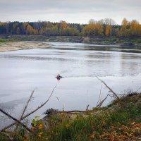 Последняя рыбалка сезона :: Юрий Налобин