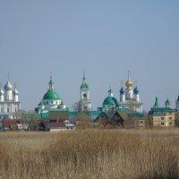 Спасо-Яковлевский Димитриев мужской монастырь :: Сергей Кунаев