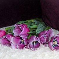 тюльпаны розовые :: Ангелина К
