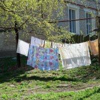 Опять весна на белом свете.... :: Ната Волга