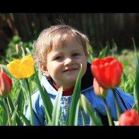 Весна :: Светлана Попова