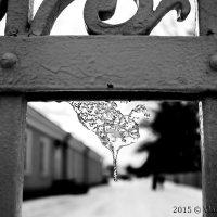 Сосулька на чугунных воротах в парке :: Vladislav Gubskiy