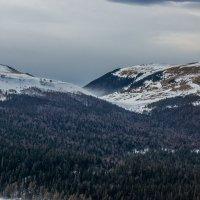 Метель в горах... :: Александр Хорошилов