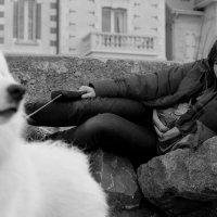 Мечты.... :: Елена Мартынова