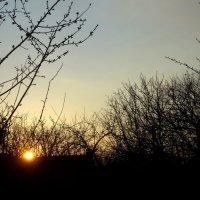 Закат в апреле... :: Тамара (st.tamara)