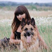 Девушка в поле с немецкой овчаркой. :: Юрий Белов