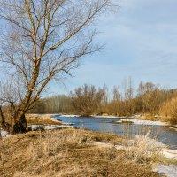У весенней реки :: Любовь Потеряхина