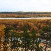 И осень прошлую не забываем... :: Galina S*