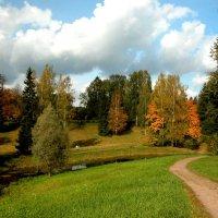 Осенние тропы :: Наталья Лунева