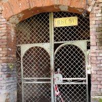 Дёрни за верёвочку, дверь и откроется... :: Нина Бутко