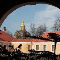 А из нашего окна Петропавловка видна... :: Вера Моисеева