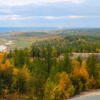 Город Лабытнанги вид с горы :: Алена Дегтярёва