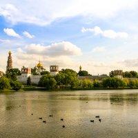 Новодевичий монастырь :: Владислав Лопатов