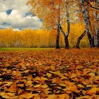 Осенний лист :: Влад
