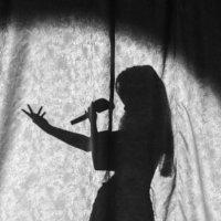 тень которая поёт :: Василий Либко
