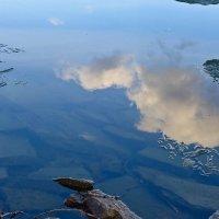 По небу плыли облака :: Светлана Игнатьева