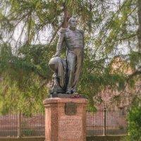 Памятник Белингсгаузену. :: Сергей Исаенко