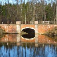 Баболовский мост-плотина :: Елена